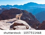 mount sinai  mount moses in... | Shutterstock . vector #1057511468