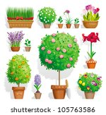 amaryllis,beauty,botany,bow,bush,celebrate,citrus,crock,floral,flower,flowerpot,freesia,garden,gardening,grass