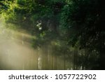 a beautiful sun ray with pine... | Shutterstock . vector #1057722902