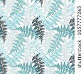 fern frond herbs  tropical... | Shutterstock .eps vector #1057777265