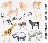 big set of hand drawn sketch... | Shutterstock .eps vector #1057810985