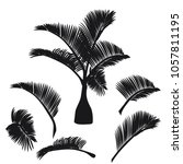 tropical palm tree silhouette... | Shutterstock .eps vector #1057811195