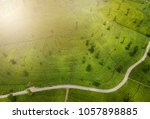 tea plantations in the... | Shutterstock . vector #1057898885