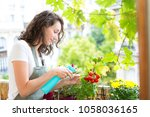 view of a young woman watering... | Shutterstock . vector #1058036165