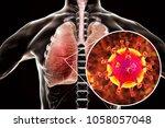 mers virus  meadle east... | Shutterstock . vector #1058057048