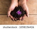 top view of dirty hands holding ... | Shutterstock . vector #1058156426