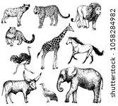 big set of hand drawn sketch... | Shutterstock .eps vector #1058284982