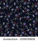 paisley pattern on background | Shutterstock .eps vector #1058290838