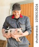 Small photo of young farmer with young pig agriculture