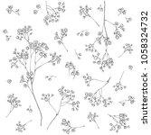 gypsophila flower. fragile and...   Shutterstock .eps vector #1058324732