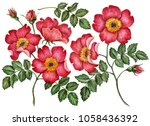watercolor set of rose hip... | Shutterstock . vector #1058436392
