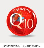 coenzyme q10. substance for... | Shutterstock .eps vector #1058460842
