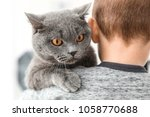 Stock photo little child holding cute cat at home 1058770688