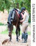 Young Teenage Girl Equestrian...