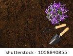 gardening tools on fertile soil ... | Shutterstock . vector #1058840855