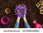 planting a plant with gardening ... | Shutterstock . vector #1058840882