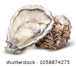 fresh oyster isolated with... | Shutterstock . vector #1058874275