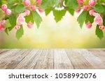 spring tree blossom background  | Shutterstock . vector #1058992076