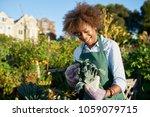 african american woman tending... | Shutterstock . vector #1059079715