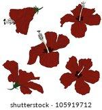 hibiscus vector illustration | Shutterstock .eps vector #105919712