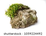 Moss And Rock On White...