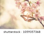 cherry blossom trees in spring... | Shutterstock . vector #1059357368