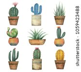 watercolor set of cacti and... | Shutterstock . vector #1059423488