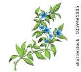 leaves and flowers digitally...   Shutterstock . vector #1059465335