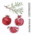 branch with grenades | Shutterstock . vector #1059580205