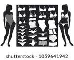 vector set of woman lingerie... | Shutterstock .eps vector #1059641942