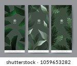 branding packaging tropical... | Shutterstock .eps vector #1059653282