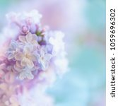 beautiful spring background... | Shutterstock . vector #1059696302