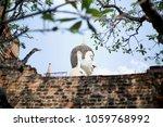 cultural history in ayutthaya | Shutterstock . vector #1059768992