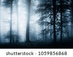 dark woods with trees in fog ... | Shutterstock . vector #1059856868