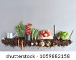 organic fruits and vegetables... | Shutterstock . vector #1059882158