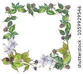blackberry leaves frame in a... | Shutterstock . vector #1059929546