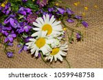bouquet with beautiful rustic... | Shutterstock . vector #1059948758