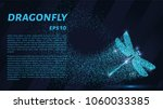 dragonfly of the particles.... | Shutterstock .eps vector #1060033385