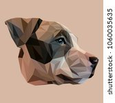 stafford low poly design.... | Shutterstock .eps vector #1060035635