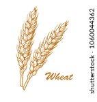 wheat bread ears cereal crop... | Shutterstock .eps vector #1060044362