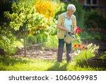 senior woman doing some... | Shutterstock . vector #1060069985