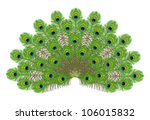 Illustration Of Peacock\'s Tail...