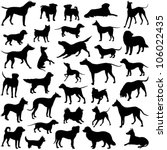 dog collection   vector... | Shutterstock .eps vector #106022435