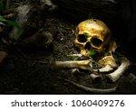 skull and bones buried in the...   Shutterstock . vector #1060409276