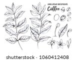 hand drawn pencil illustrations.... | Shutterstock . vector #1060412408
