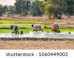 don khong 4000 islands  laos  ... | Shutterstock . vector #1060449002