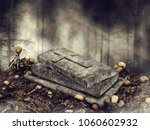 dark scene with an open coffin... | Shutterstock . vector #1060602932