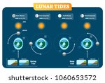 lunar and solar tides vector... | Shutterstock .eps vector #1060653572