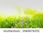 natural green background | Shutterstock . vector #1060676252