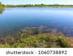 beautiful fresh spring...   Shutterstock . vector #1060738892